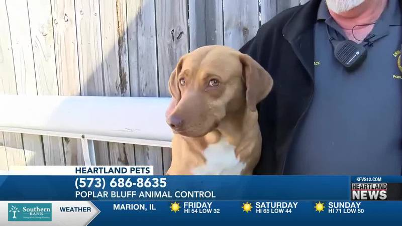 Heartland Pets feat. Susie on 4/2