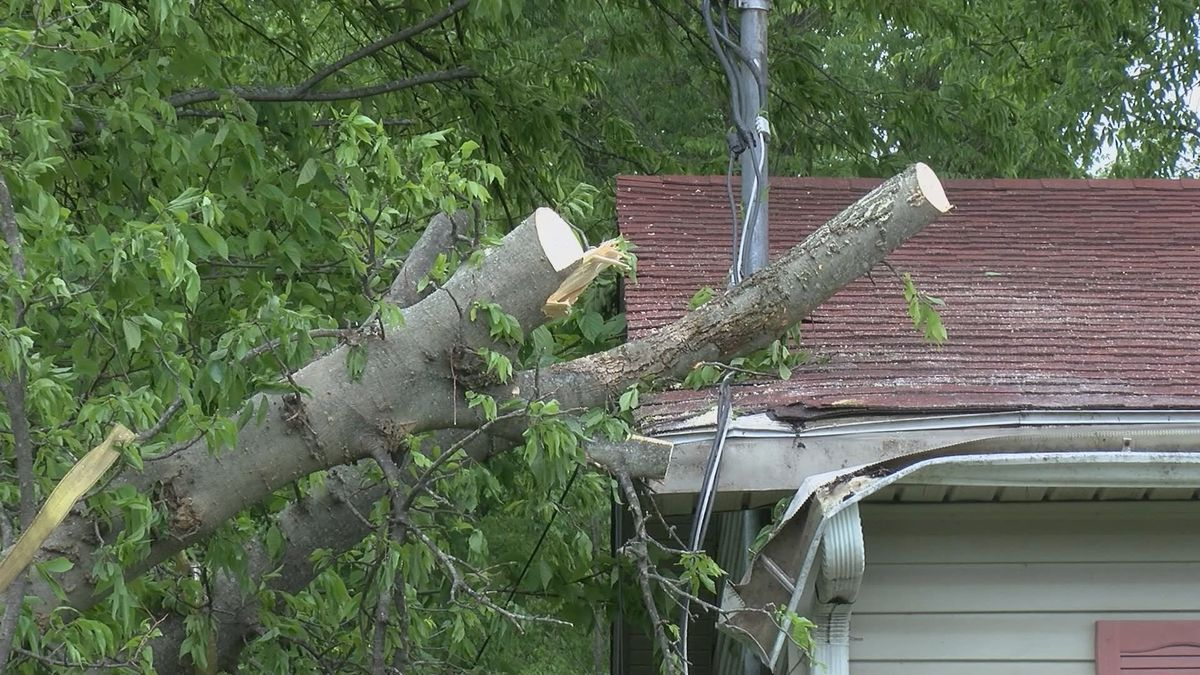 A state of emergency was issued in Hickman County due to extensive storm damage.