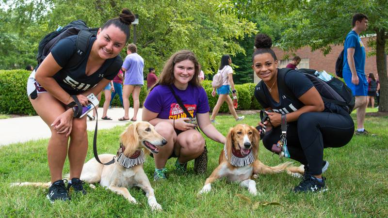 SIU Carbondale students take some time to meet Saluki dogs as they start off their 2021-2022...