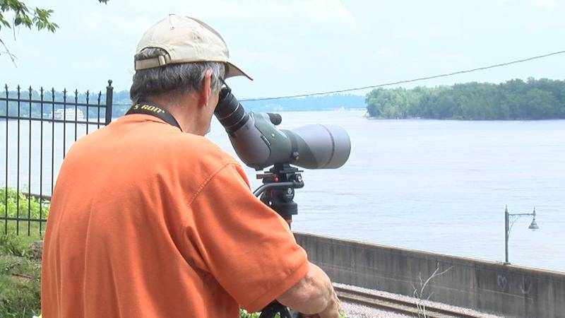 Dr. Bill Eddleman and other local birders team up to track the birds in the area.