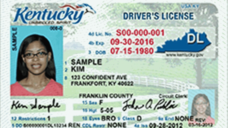 Example of a Kentucky driver's license