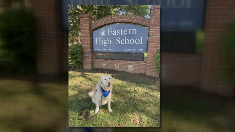 Mercy The Comfort Dog visited students at Eastern High School Thursday, after a student was...