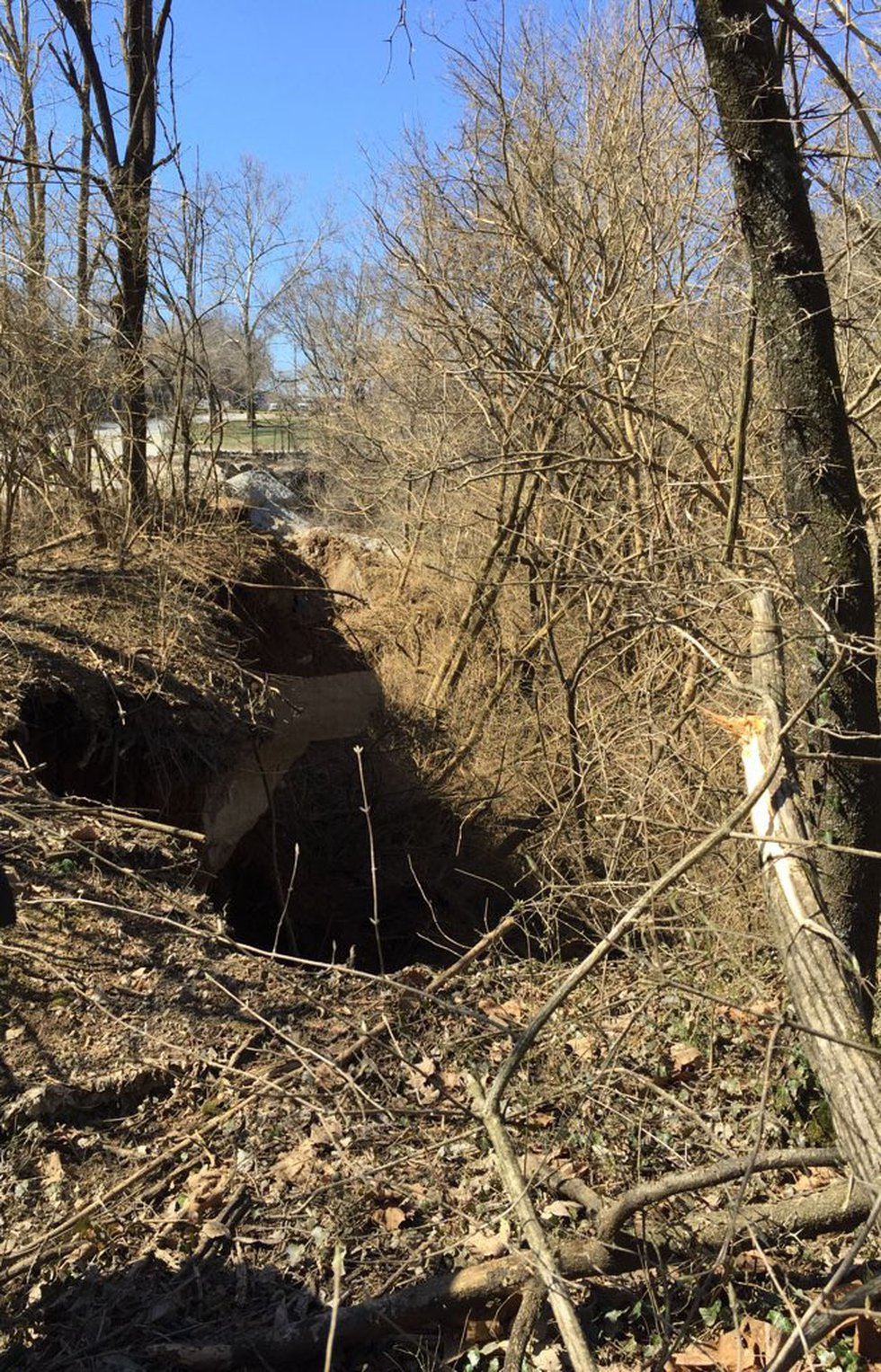 The sinkhole was found Wednesday morning by zoo staff.