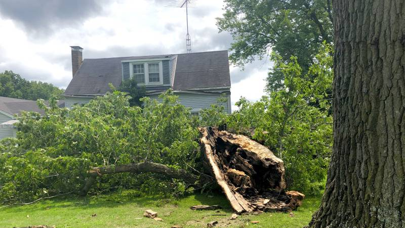 Storm damage in Cutler, Ill.