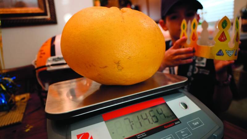 Members of the LDAF Weights and Measures Division were on hand to officially weigh and measure...