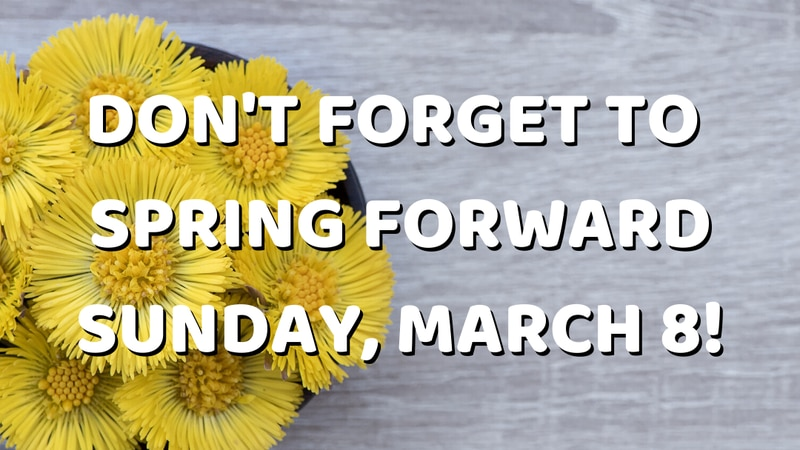 Move your clocks up one hour this weekend. (Source: KFVS)