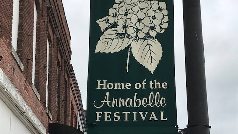 The Annabelle Festival kicks off this weekend where up to a thousand people are expected at the...